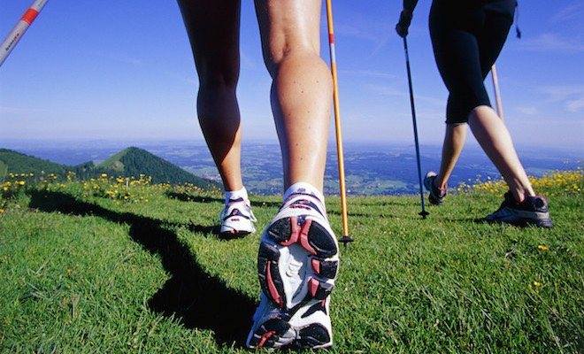 Sportive Escursioni Quali Scegliere Per Scarpe Alte FdvZwOOxq